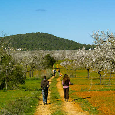 Hiking in Ibiza: another way to discover the island