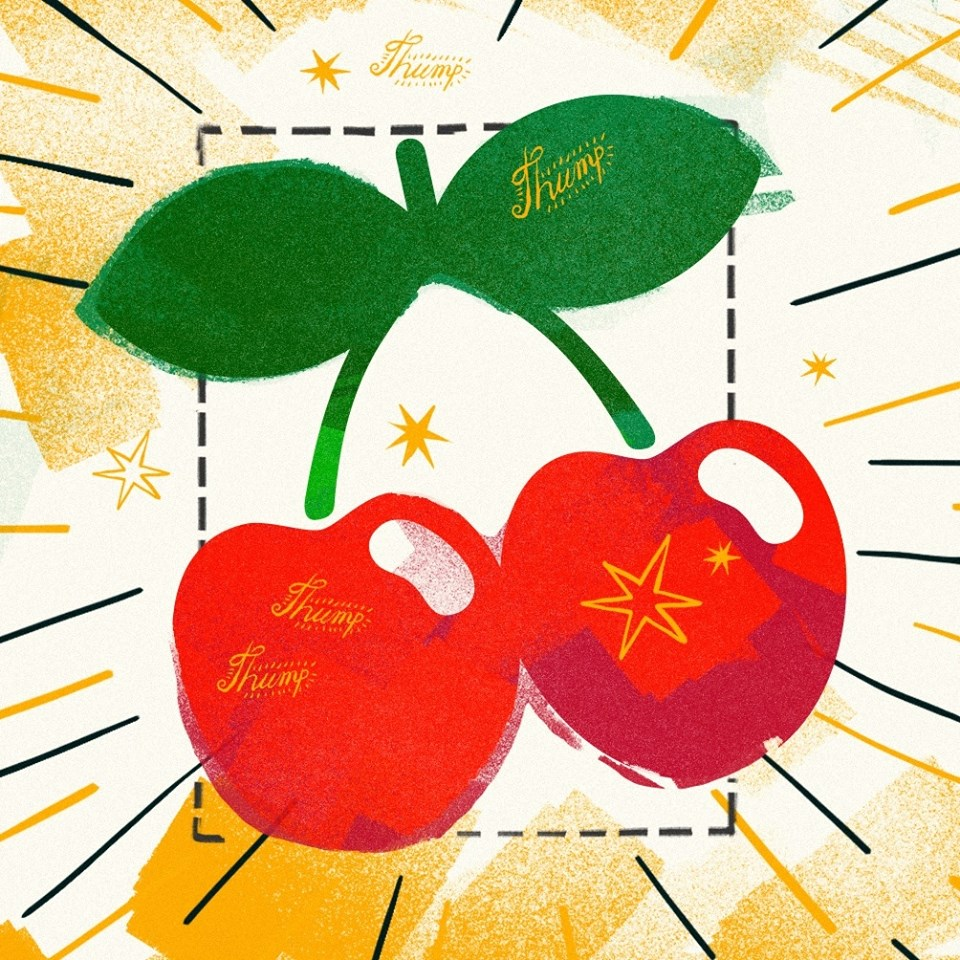 Discover the new Pacha
